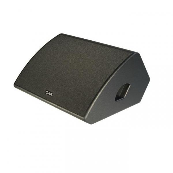 GAE Zoom 12 Двух полосный напольный монитор коаксиального типа