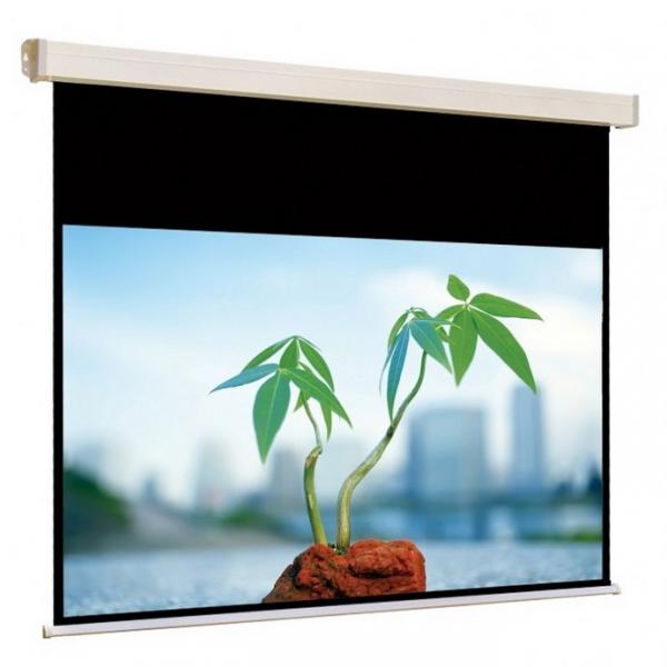 MW Cinelectric Screen бюджетный моторизированный экран