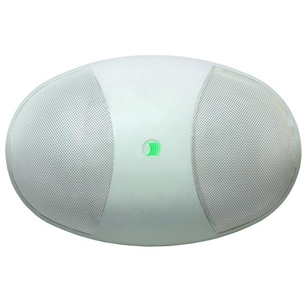 PASO C36/6-2EN Настенный громкоговоритель для систем VES