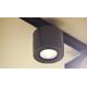 NEWTEC CONO canto V подвесной громкоговоритель 20 Вт/100 В