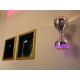NEWTEC Diabolo дизайнерская колонка со светильником